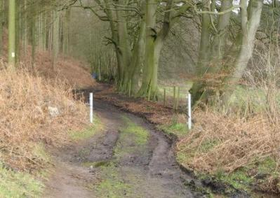 10 restricted byway and gateposts
