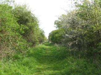 1 Roman road