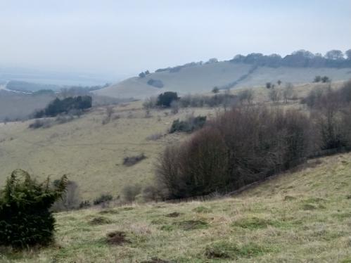 Escarpment, Beacon Hill